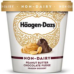 Haagen daz non-dairy peanut butter fudge