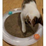 PETKIT Cat Scratcher & play