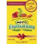 Mott's Fruitsations fruit flavoured snacks
