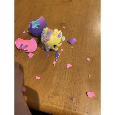 Hatchimals Hatchtopia Life