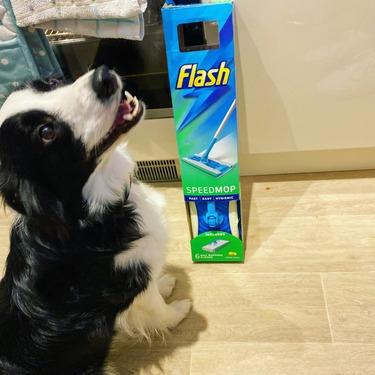 Flash Speedmop