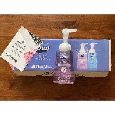 Dial Pure Micellar Foaming Hand Wash Hyacinth