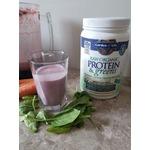 Garden of Life Protein & Greens