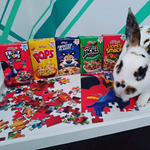 Cereal puzzles