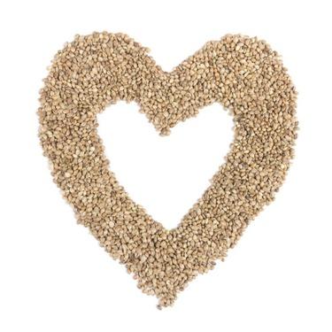 Manitoba Harvest Hemp Hearts