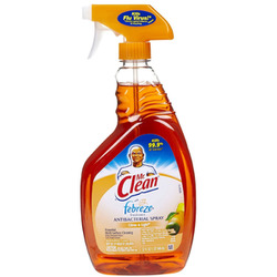Mr Clean Antibacterial Spray