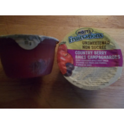 Mott's Fruitsations Unsweetened Country Berry Apple Sauce