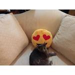 Brite'n'way Emoji pillow (heart eyes)