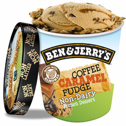 Ben & Jerry's Non-Dairy: Coffee Caramel Fudge