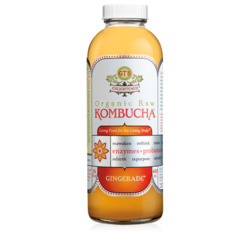 GT's Kombucha Gingerade