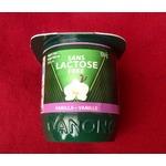 danone lactose free yogurt
