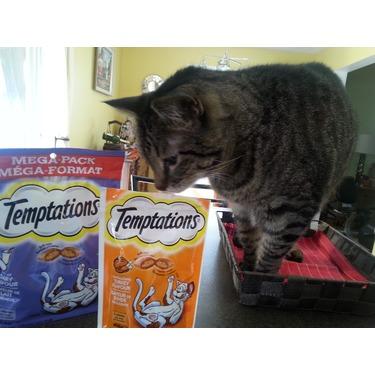 Temptations Mix Ups Chicken, Catnip & Cheddar Flavor Cat Treats