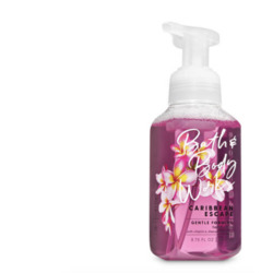 Bath & Body Works Caribbean Escape Gentle Foaming Hand Soap